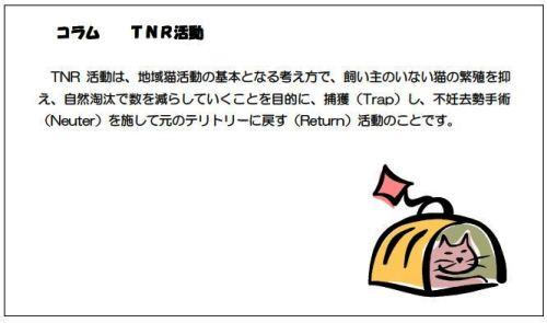 TNR 環境省