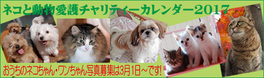 ネコと動物愛護チャリティーカレンダー2017