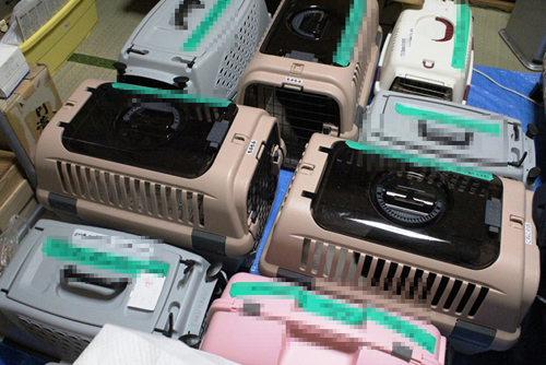 長野県松本市、多頭飼育崩壊30匹4