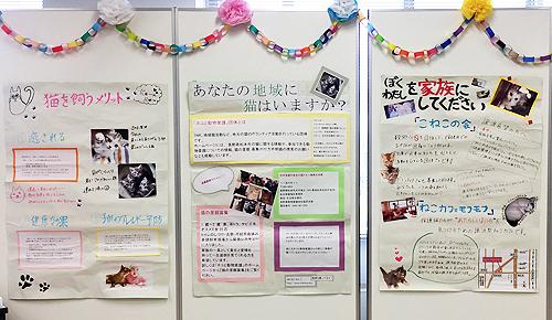 松本大学「梓乃森祭」1