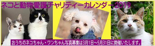 ネコと動物愛護チャリティーカレンダー2019おうちのネコちゃん・ワンちゃん写真募集