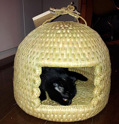 猫つぐら(猫ちぐら)1