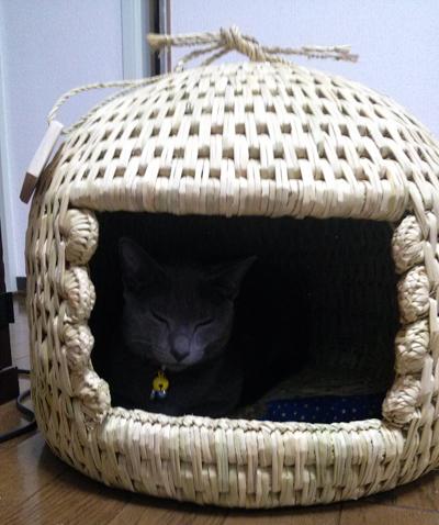 猫つぐら(猫ちぐら)2