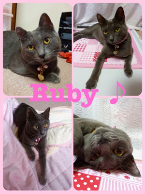 Rubyちゃん