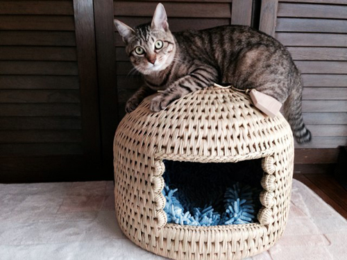 猫つぐら(猫ちぐら)お客さまの声5