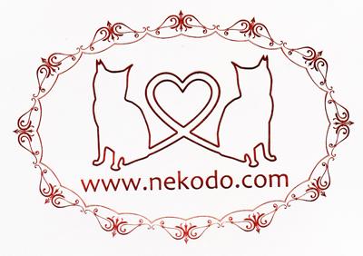 猫堂ロゴ(クリア)
