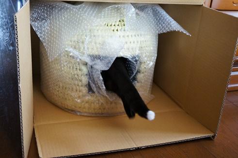 猫つぐら(猫ちぐら) 竹炭(ちくたん)ちゃん