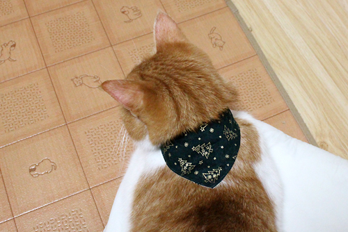 猫と音符アイボリー×ツリーグリーン、店員をちび2