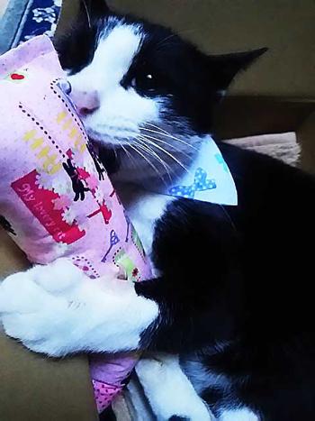 手作りキッカー ルンルン黒猫ピンク