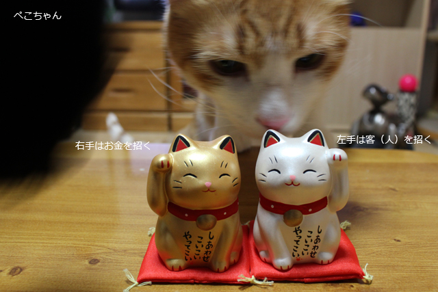 招き猫さん