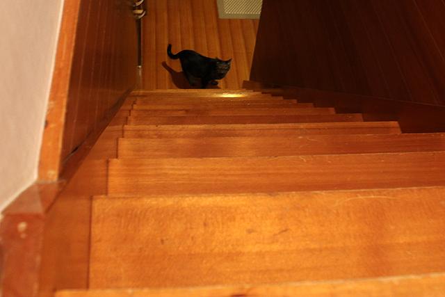 階段の下へ