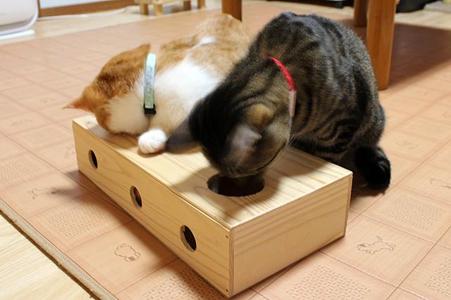 手作りチーズボックス