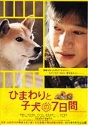 映画「ひまわりと子犬の七日間」