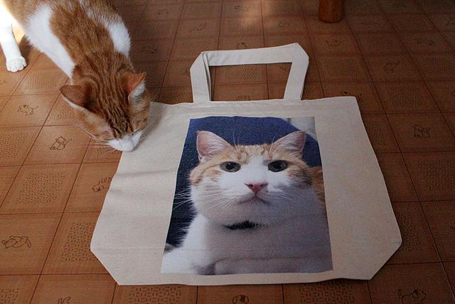 猫堂のオリジナル写真プリント、キャンバスバッグ