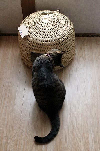 猫堂オリジナル 猫つぐら(猫ちぐら)