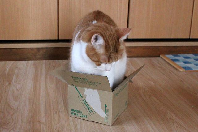 箱小さすぎ