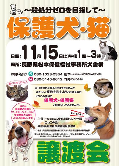 保護犬・猫譲渡会ポスター