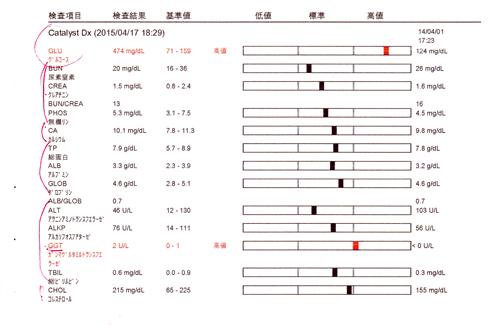 血液検査2