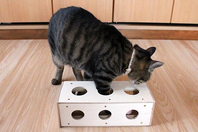 手作りチーズボックス3