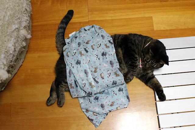 洗濯ネット掛け布団猫