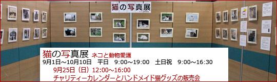 猫の写真展バナー