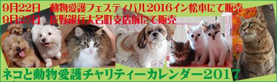 ネコと動物愛護チャリティーカレンダー2017発売中です!
