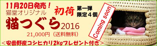 猫つぐら(猫ちぐら)2016 第一弾、限定4個にて11月20日発売
