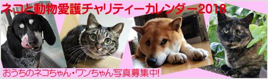 ネコと動物愛護チャリティーカレンダー2018おうちのネコちゃん・ワンちゃん写真募集
