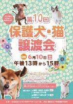 第10回保護犬猫譲渡会