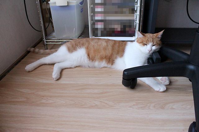 パソコン机の脚枕