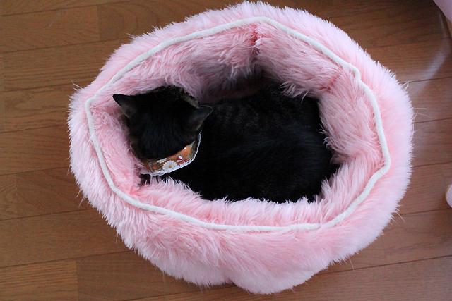 ピンクのふわふわベッド