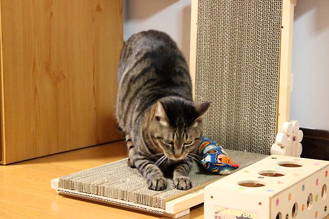 猫の手作り爪とぎ