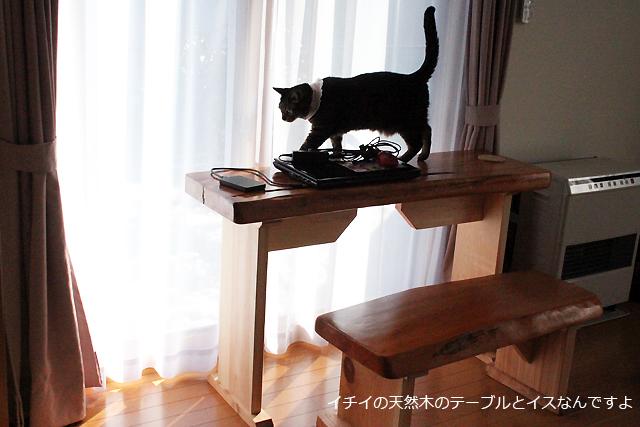 天然木イチイのテーブルとイス