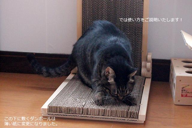 猫の手作り爪とぎ6