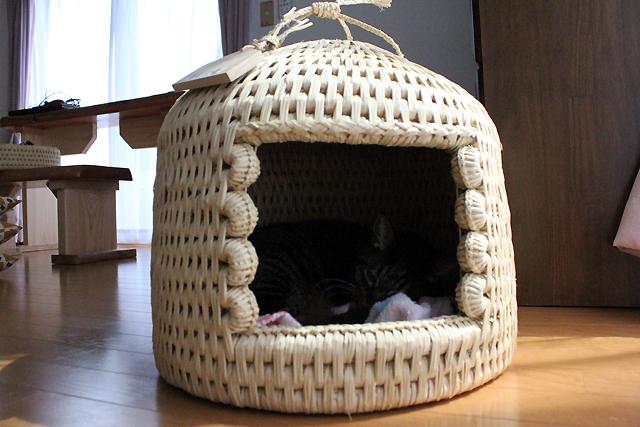 猫つぐらでお昼寝猫