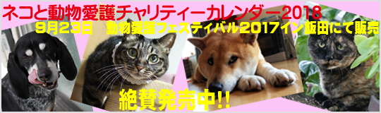 ネコと動物愛護チャリティーカレンダー2018、動物愛護フェスティバル2017イン飯田にて販売