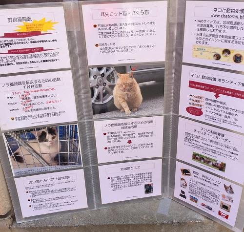 プチ地域猫活動ミニパネル