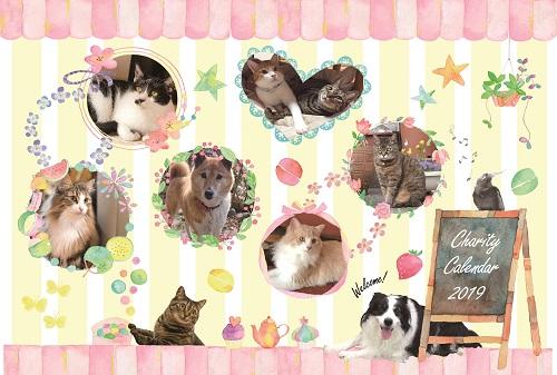 ネコと動物愛護チャリティーカレンダー2019表紙