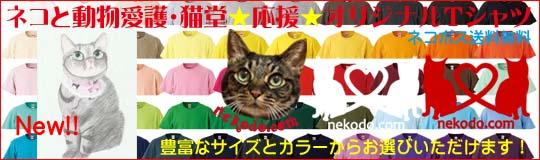 ネコと動物愛護・猫堂応援オリジナルTシャツ、イラストちゃあ店長新発売