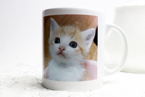 オリジナル写真プリント、マグカップ