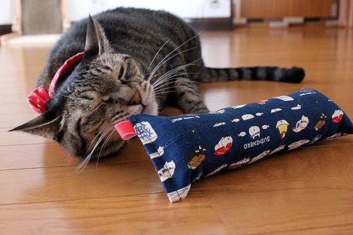 またたび入り手作りキッカー寿司猫、めぐ店員