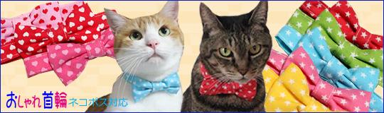 猫のおしゃれリボン首輪、スイートハートとスター柄新発売