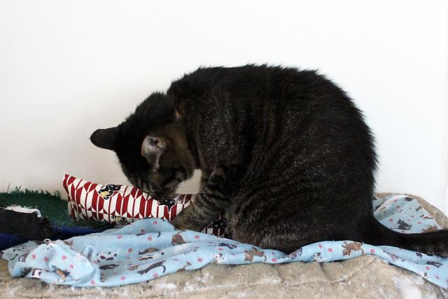 手作りキッカー 招き猫(矢がすり)エンジ