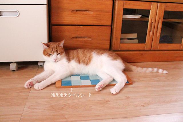 猫用冷え冷えタイルシート