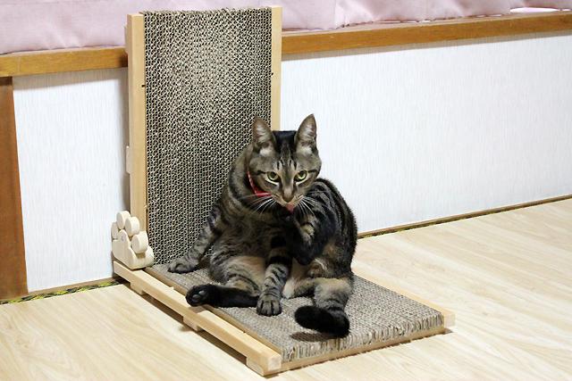 猫の手作り爪とぎ3