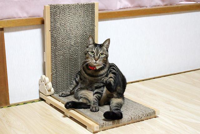 猫の手作り爪とぎ5