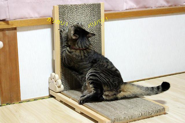 猫の手作り爪とぎ@猫堂