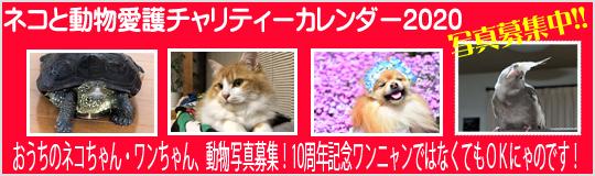 ネコと動物愛護チャリティーカレンダー2020おうちのネコちゃん・ワンちゃん動物家族の写真募集!