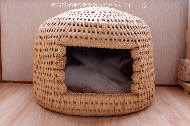 猫つぐら(猫ちぐら)でおやすみ猫をちび