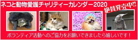 ネコと動物愛護チャリティーカレンダー2020発売です!